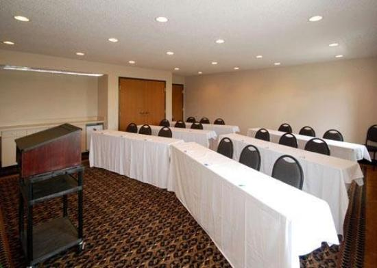 Comfort Inn &amp; Suites Dimondale: Meeting Room
