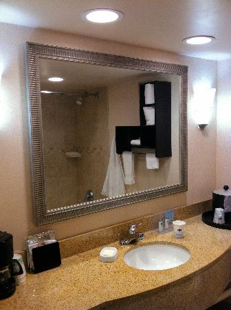 Hampton Inn Biltmore Square : Bathroom