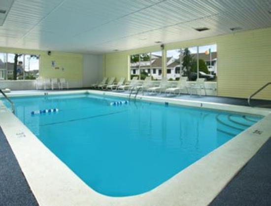 Thunderbird Motel: Pool