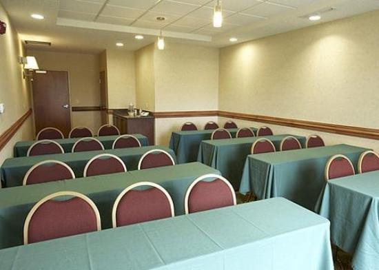 Comfort Suites Canton: Meeting Room