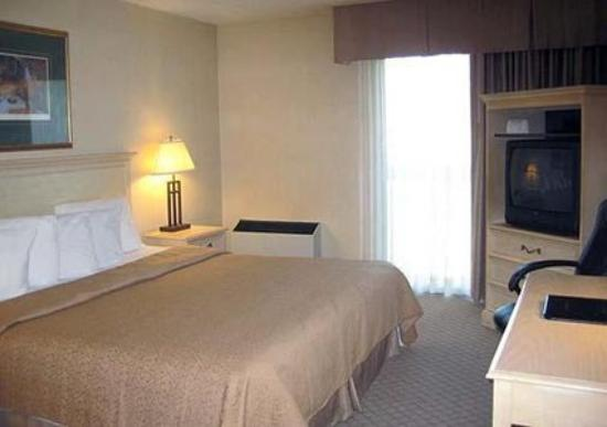 Quality Inn & Suites Brantford: Guest Room -OpenTravel Alliance - Guest Room-