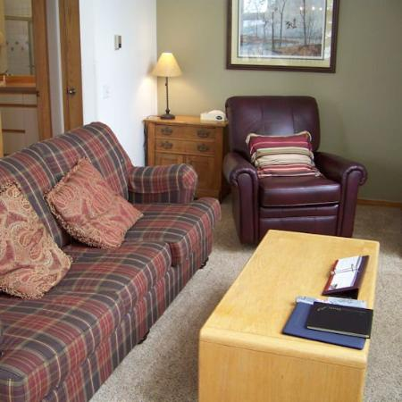Soda Springs Condos: Living Area