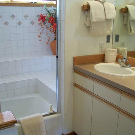 Soda Springs Condos: Bathroom