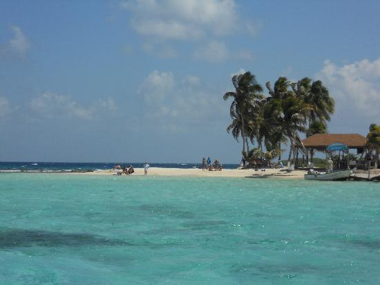 Island As We Approached Picture Of Belize Cruise Excursions Goff S Caye Beach And Snorkeling