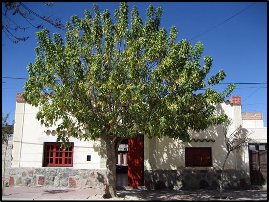 Photo of Casa Arbol B&B Cafayate