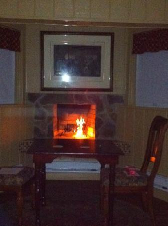 Pleasant View Farm Bed and Breakfast Inn : fireplace in the Gettysburg room
