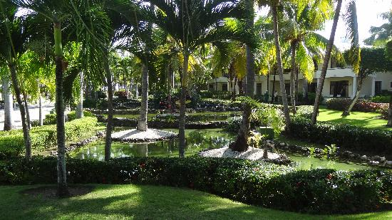 Paradisus Punta Cana: beautiful gardens