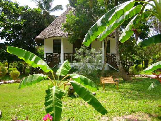 Mangrove Lodge