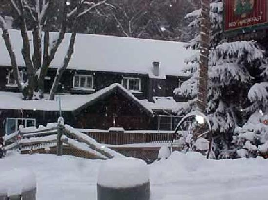 Whisperin&#39; Pines Chalet winter