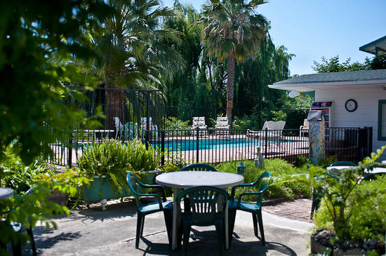 Plantation Bed & Breakfast: swimming pool