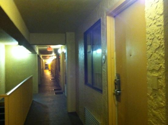 La Quinta Inn &amp; Suites USF (Near Busch Gardens): lq hallway