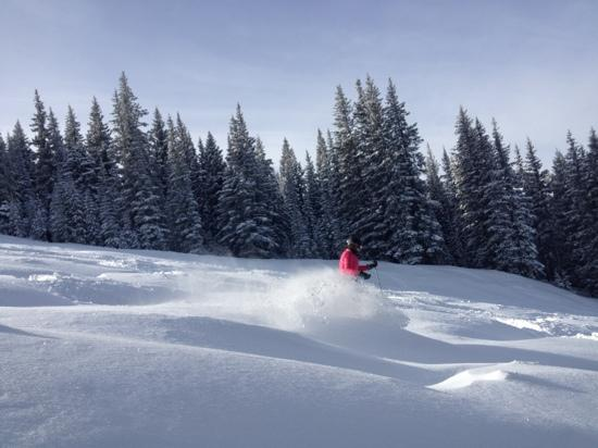 Ice House Lodge: Powder skiing