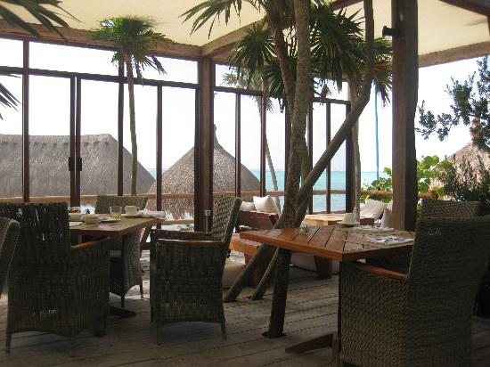 Soliman Bay, Meksika: view from restaurant at breakfast time