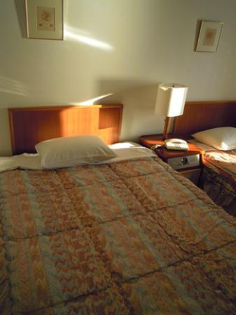 Photo of Hikone View Hotel