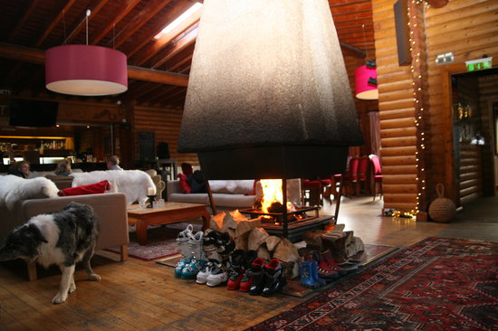 Nae Limits Log Cabin