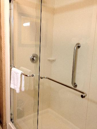 Hampton Inn & Suites Durham North I-85: Walk-in shower
