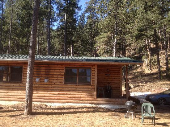 Hill City, SD: Birch Cabin