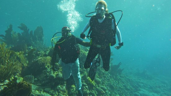 Action Adventure Divers