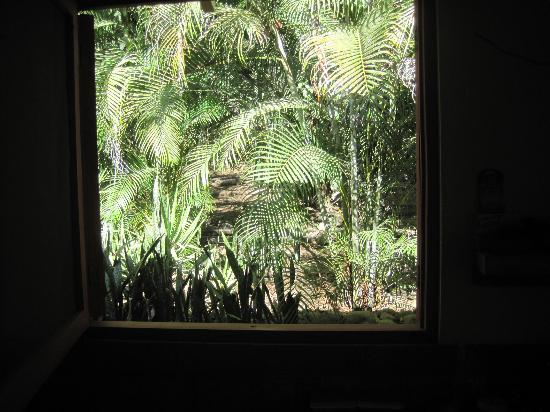 Hotel bungalows SolyLuna los Almendros.: View outside the bedroom window