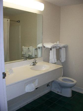 Comfort Inn Roanoke Airport : Bathroom clean with plenty of towels