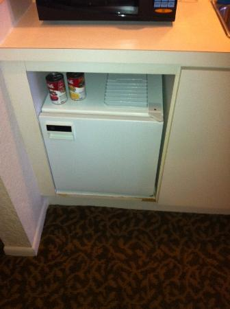 BEST WESTERN PLUS Westchase Mini-Suites: Mini Fridge, and I mean MINI