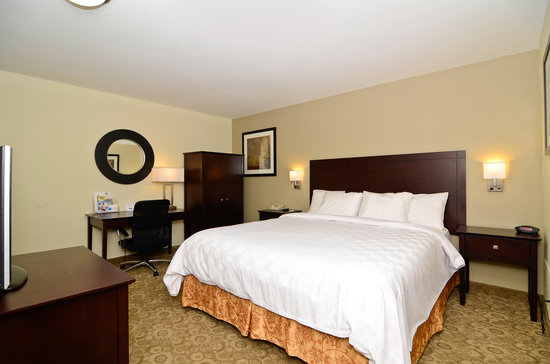 Rodeway Inn Convention Center: King Size Bedroom