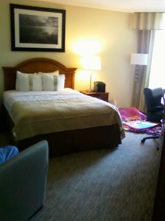 Holiday Inn Atlanta Downtown: the room nice and neat
