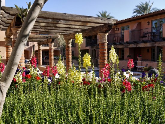 Royal Palms Resort and Spa: Rustic feel