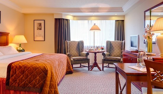 Ballsbridge Hotel: Double Room