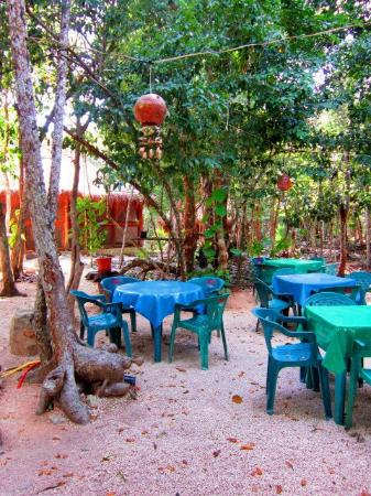 organic yoga: outside eating area