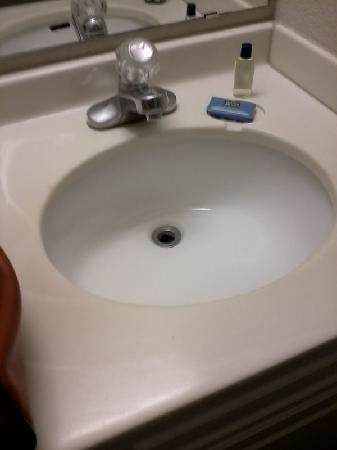 Quality Inn & Suites at Metro Center: This won't hold water