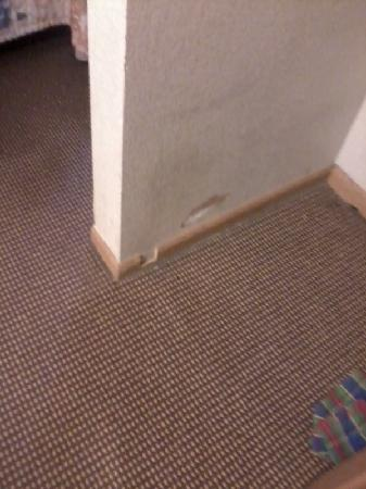 Quality Inn & Suites at Metro Center: Note the hole in the wall