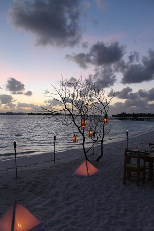 Six Senses Laamu: wine dinner