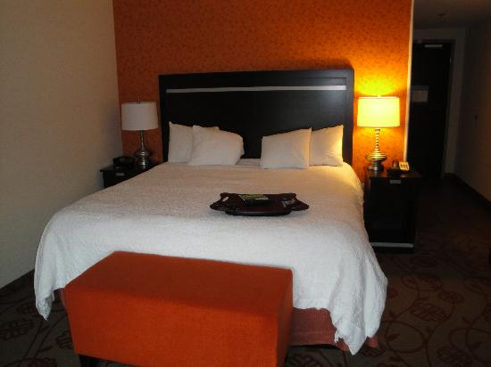 Hampton Inn &amp; Suites Chattanooga / Downtown: King Bed