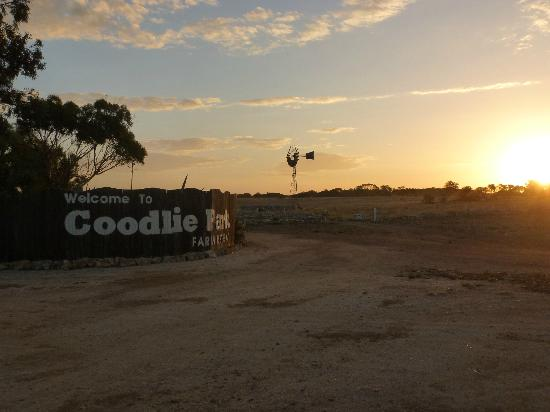 Coodlie Park Farm Retreat: Coodlie Park @ sunset