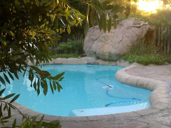 Storms River Guest Lodge: Swimming pool