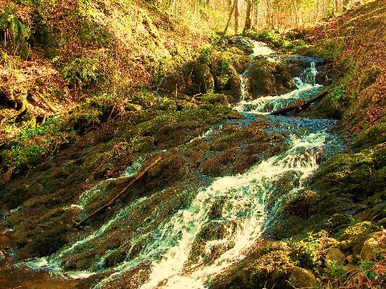 The Firgarth: Waterfall - another walk from FirGarth
