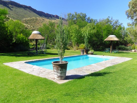 Lemoenfontein Game Lodge: Lovely little pool
