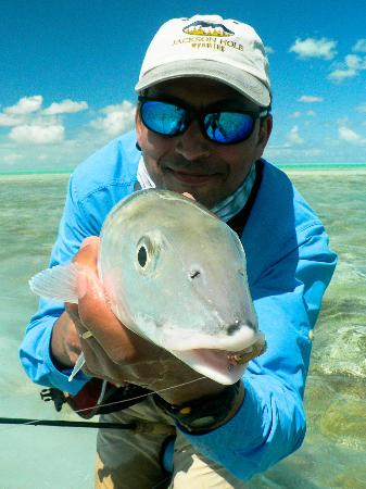 Hue evans making us laugh feb 2012 picture of da for Turks and caicos fishing charters
