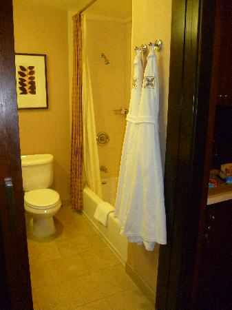 The Ambrose Hotel: toilet and tub area