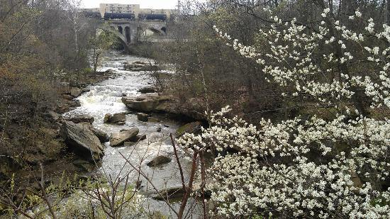 Rocky River Reservation: The Berea Falls with blossoming flowers viewed from the deck.