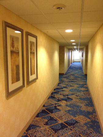 Residence Inn Boston Woburn: nice new carpet