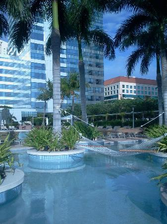 Four Seasons Hotel Miami : Hammocks over the pool 