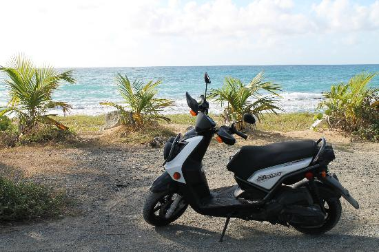 Explore the Beaches on Scooters