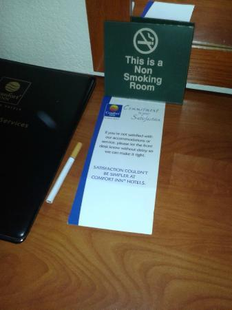 Comfort Inn Nashville/White Bridge: a cigarette, found in a non-smoking room!!
