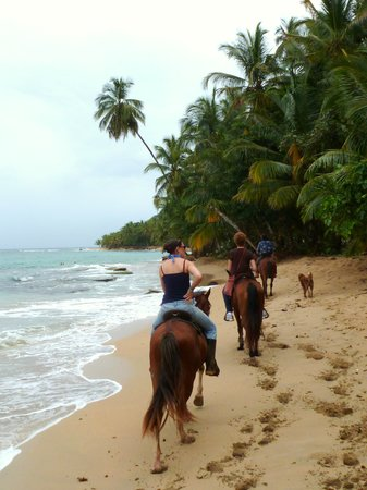 Playa Chiquita Riding Adventures