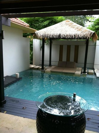 Amara Sanctuary Resort Sentosa: Day time our Villa Pool