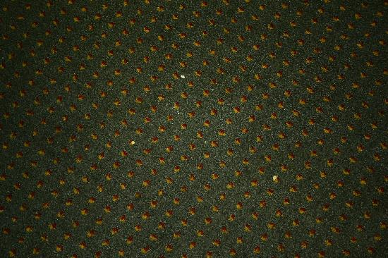 Econo Lodge Inn & Suites: not vacuumed carpet