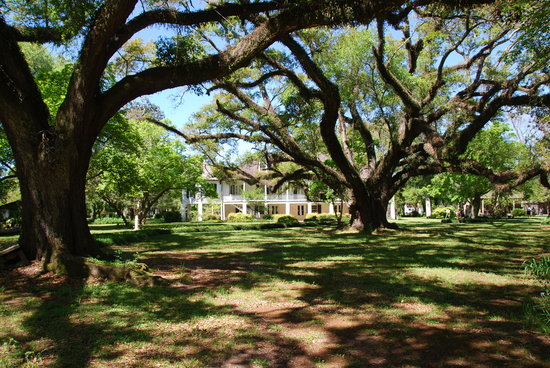 Cane River Creole National Historical Park: Melrose Plantation