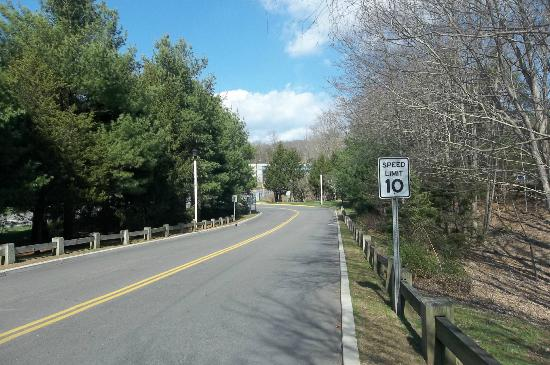 Two Trees Inn: Road leading to Foxwoods